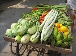 veg cart